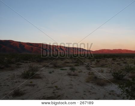 First Light In The Desert