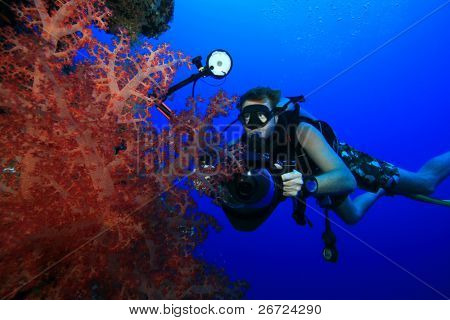 Underwater Photographer with Digital SLR camera diving on a coral wall