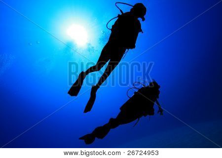 Scuba Divers silhouetted against the sun