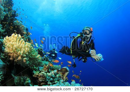 Scuba Diver and Coral Reef with Tropical Fish in the Red Sea