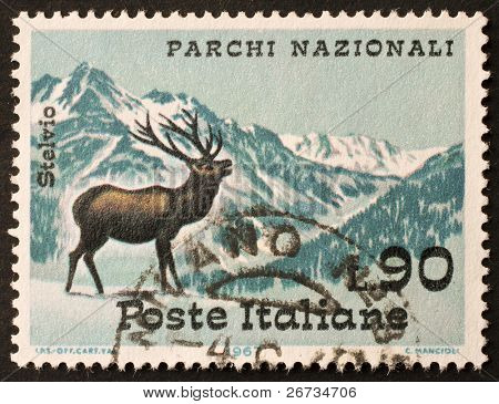 ITALY - CIRCA 1967: a stamp printed in Italy shows image of a deer in Stelvio National Park. Italy, circa 1967