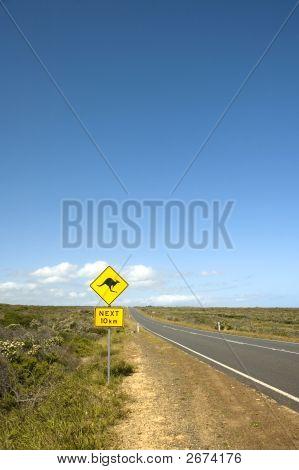 Känguru-Zeichens durch eine australische Bush-Straße