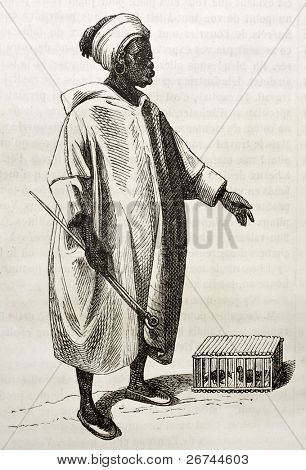 Birds merchant old illustration. By unidentified author, published on Magasin Pittoresque, Paris, 1843