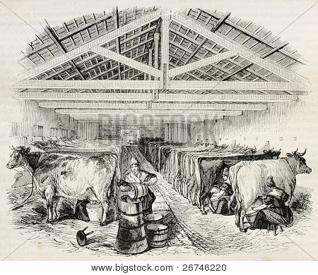 Stable old illustration. By unidentified author, published on Magasin Pittoresque, Paris, 1844