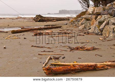 West Coast Beach After Storm.