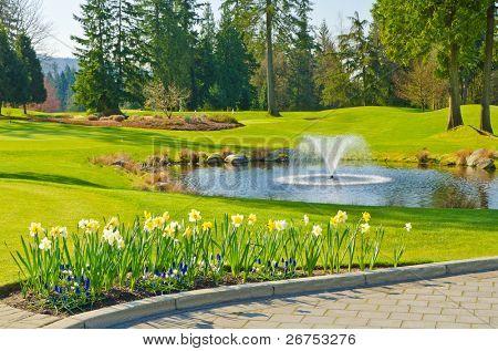 Golf lindo lugar com lindo verde e lagoa