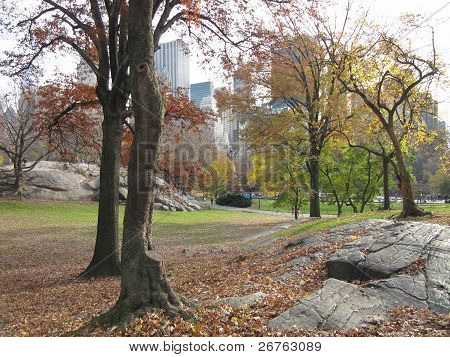 Central Park New York City in Fall with tall skyscrapers in background and Rock Outcrops