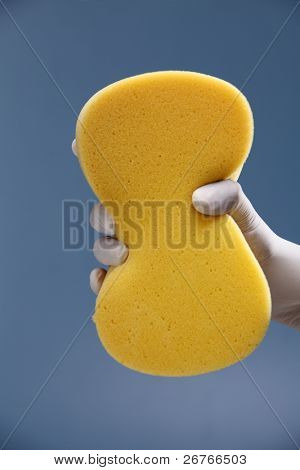 Hand with white protective rubber glove holding a yellow sponge.
