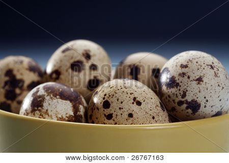 Bowl of quail eggs isolated on the blue background.