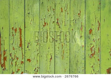 Painted Green Backgdrop