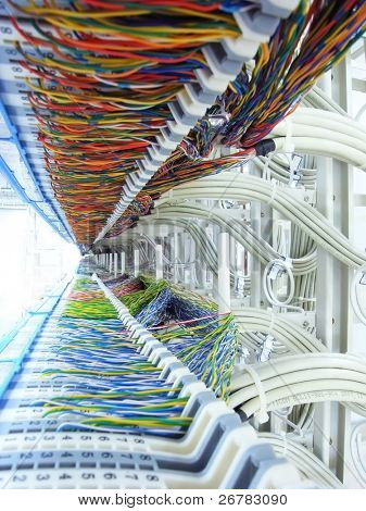 a shot of network cables and servers in a technology data center