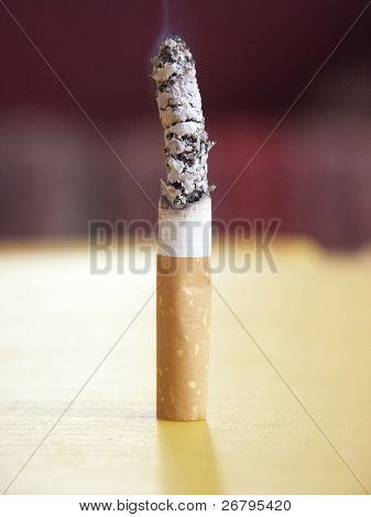 close up shot of a single cigarette butt