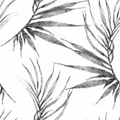 Tropical Seamless Pattern. Watercolor Curved Palm Leaves, Japanese Bamboo. Black And White Exotic Sw poster