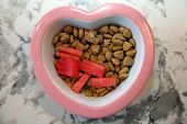 Dog food with watermelon and green beans. Fresh Dog Dinner with fruit and veggies. Healthy dog food. poster