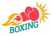 Vector Retro Logo For A Boxing With Red Glove. Retro Emblem For Boxing With Red  Glove With Flame poster