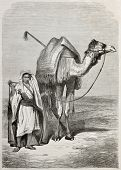 Old illustration of a boy holding camel's reins. Created by Pottin, published on Le Tour du Monde, P