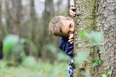 Spying Is Exciting. Small Spy. Small Child Hide Behind Tree In Forest. Small Boy Play Guessing Game. poster