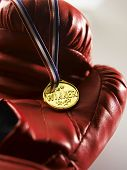 pic of boxing gloves  - close up of the medal on the boxing glove - JPG