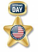 Veterans Day Gold Star Icon Logo. Realistic Illustration Of Veterans Day Gold Star Icon Logo For Web poster