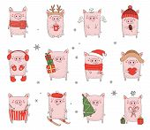 Collection Of Cute Winter Pigs. New 2019 Year. Symbol Of The Year In The Chinese Calendar. Vector Ca poster