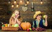 Celebrate Harvest Festival. Children Presenting Harvest Vegetable Wooden Background. Kids Girl Boy F poster