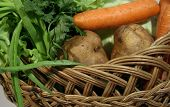 picture of molly  - Different fresh vegetables in wooden wicker molly - JPG