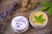 Cannabis hemp cream with marijuana leaves, lavender and nugs over wood background - cannabis topical poster