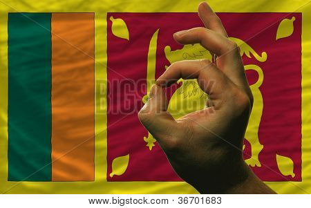Ok Gesture In Front Of Srilanka National Flag