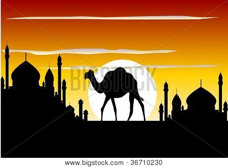 camel trip with mosque background