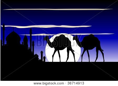 camel trip silhouette with beautiful mosque background