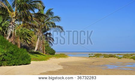 Sotavento Beach in Fuerteventura, Canary Islands, Spain