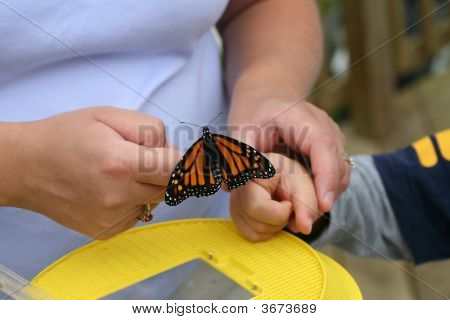 Mother Helping Put A Butterfly On Her Child\'S Finger