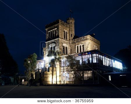 Larnach Castle In Night