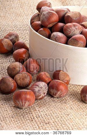 organic hazelnuts in a dish