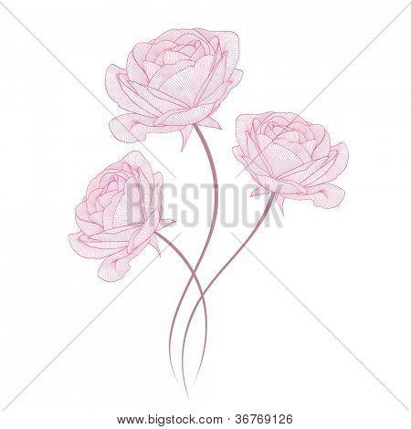Hand-drawing floral background with flower rose. Element for design. Vector illustration.