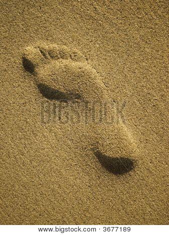 Footmark In Sand