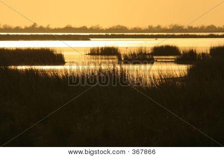 Marsh Sonnenuntergang