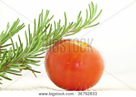 Rosemary and Tomato