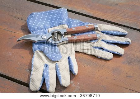 Garden Gloves And Clippers