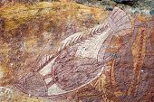 Ubirr Fish Rock Art