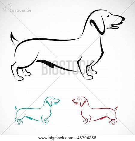 Vector image of an dog (Dachshund)