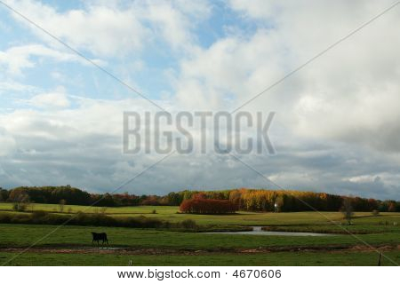 Michigan Farmland