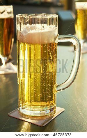 Fresh Draft Beer