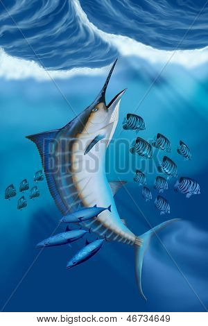 Peixe Marlin