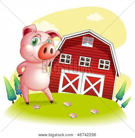 Illustration of a pig at the farm pointing the barnhouse on a white background