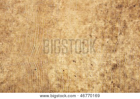 Pale Brown Paper Texture