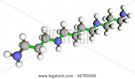 Spermine Molecular Structure