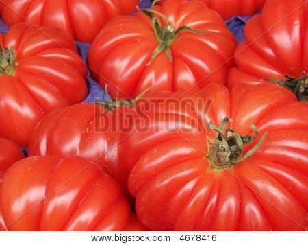 Beautiful Red Tomatoes