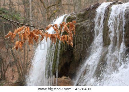 Autumn Branch On Waterwall Background