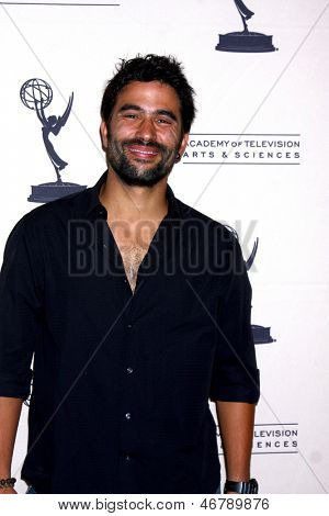 LOS ANGELES - JUN 13:  Ignacio Serricchio arrives at the Daytime Emmy Nominees Reception presented by ATAS at the Montage Beverly Hills on June 13, 2013 in Beverly Hills, CA